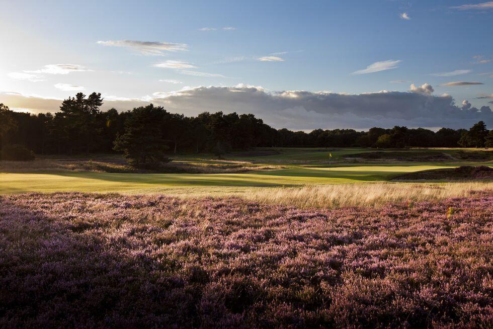 home    walton heath golf club